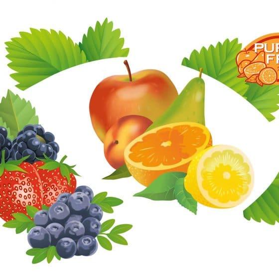 ontwerp en illustratie t.b.t. Puro Delicio-Fruto