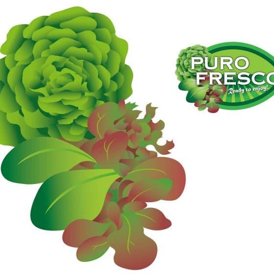 ontwerp en illustratie t.b.v. Puro Fresco